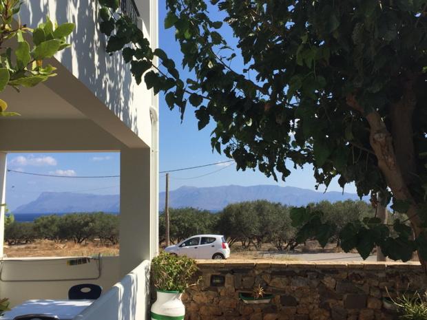 olivenplantage-kreta-auto